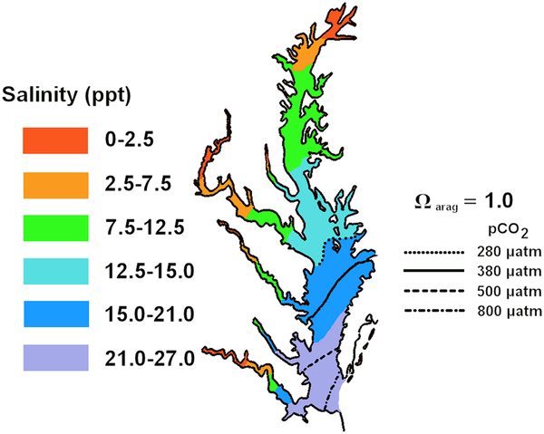 Projected mean summer positions of aragonite compensation points for the Chesapeake Bay under preindustrial, present, and predicted atmospheric CO2 levels. (From Miller et al., 2009)