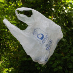 Plastic bag litter is a problem everywhere. (Copyright © 2009 David M. Lawrence)