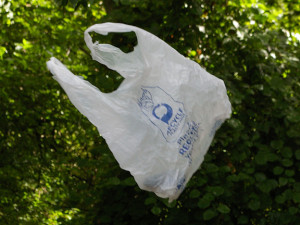 Plastic bag litter is a problem everywere