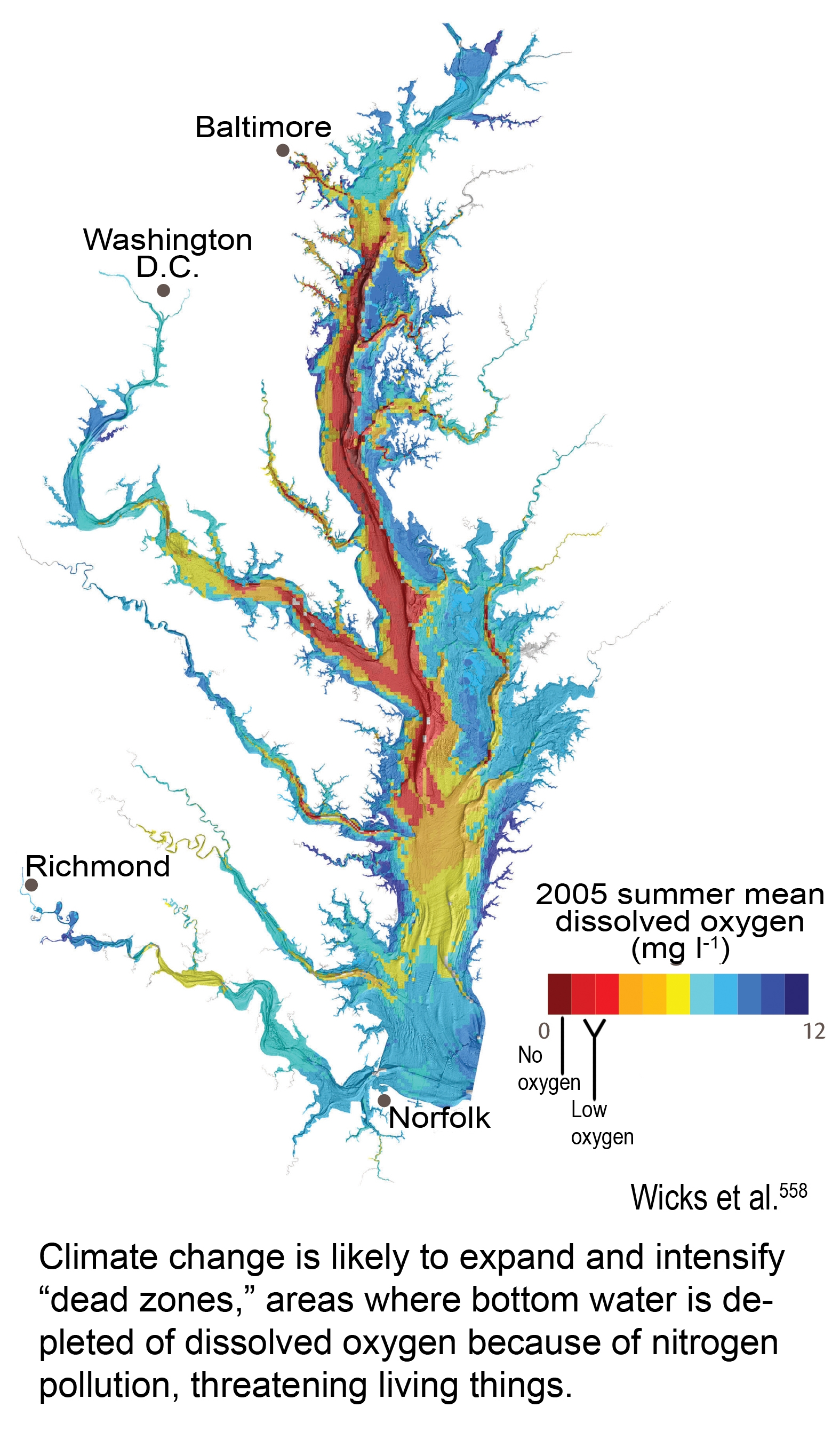 Climate change will likely lead to expansion of Chesapeake Bay dead zones. (U.S. Global Change Research Program)