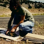 I'm pressing a milkweed I collected near El Cerrito, N.M., in the fall of 1983